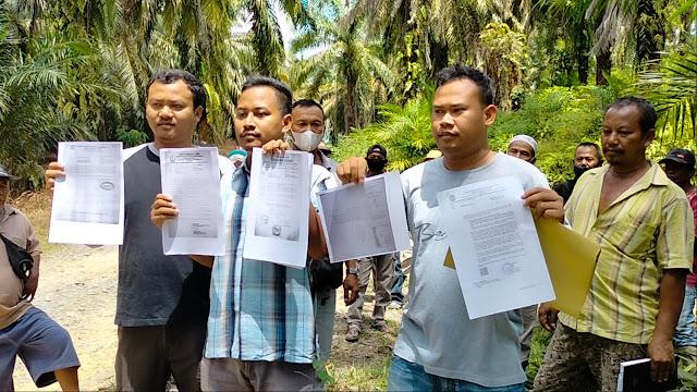 Teks foto: Kelompok Tani Gaharu Indah Desa Bukit Lembasa di areal perkebunan.
