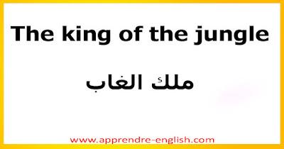 The king of the jungle    ملك الغاب