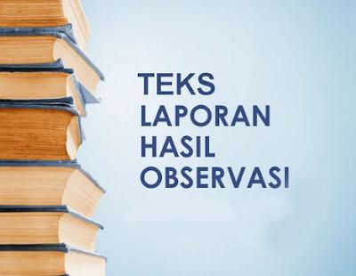 Langkah-Langkah Dalam Menyusun Teks Laporan Hasil Observasi