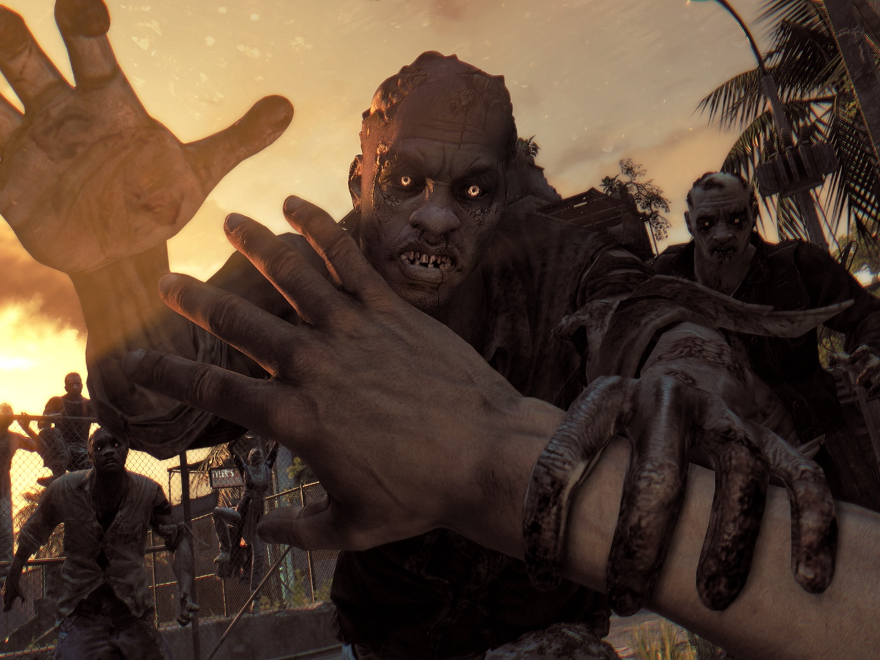 dying light, zombie, attack, game, novelty,