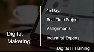 best digital marketing training institute hyderabad