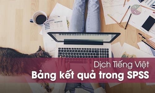 Dịch Tiếng Việt các bảng kết quả trong SPSS