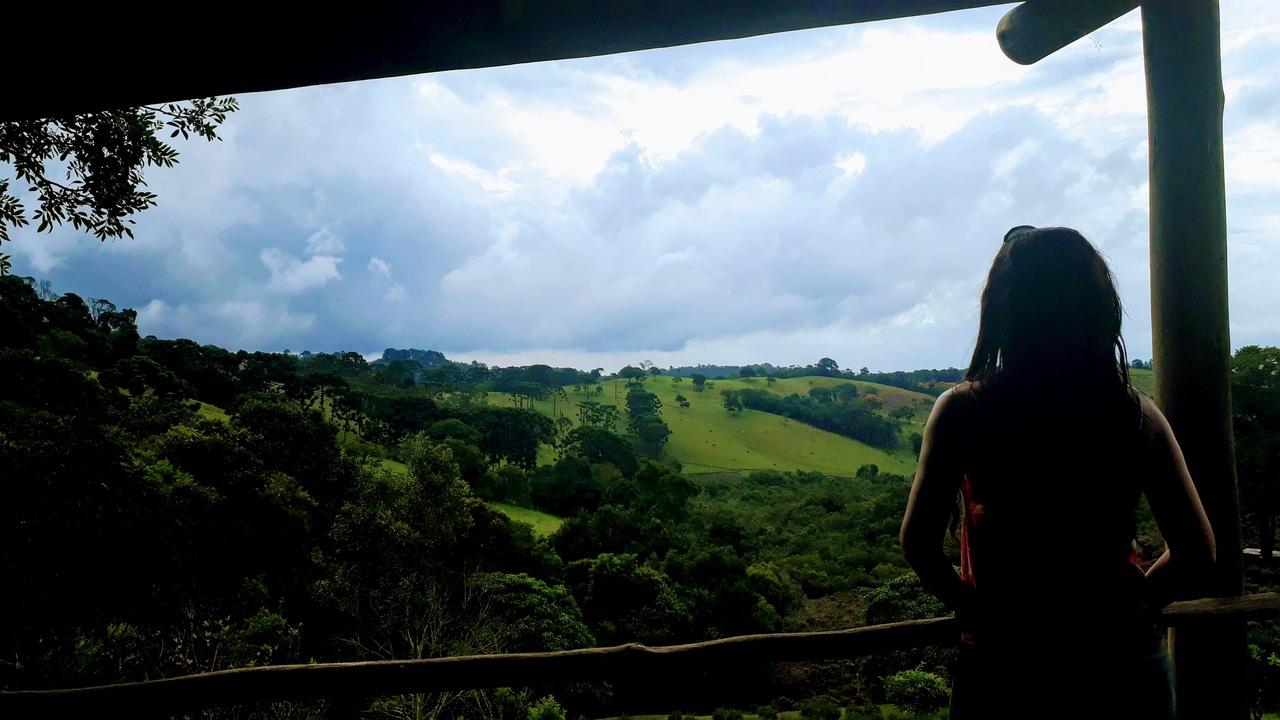 O Contemplário de Cunha - Campos de Lavanda em São Paulo