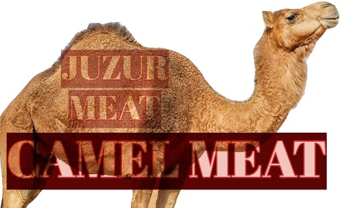 CAMEL MEAT OR JUZUR MEAT?
