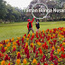 Taman Bunga Nusantara Cianjur - Wisata Bunga dan Wahana Bermain