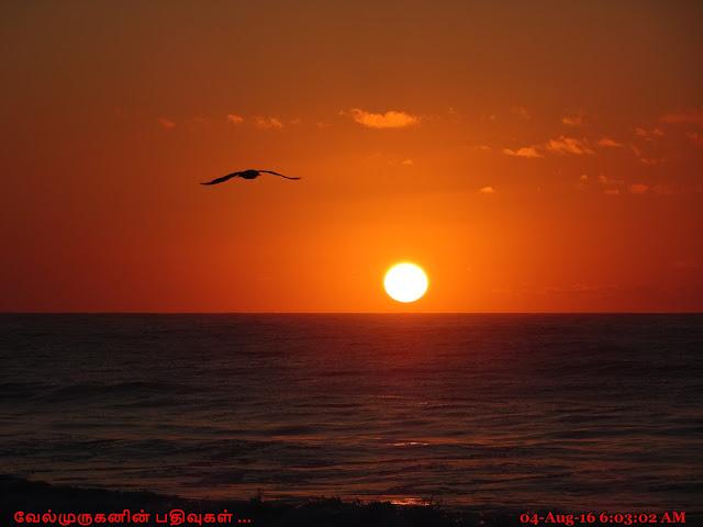 Belmar Beach Sunrise View