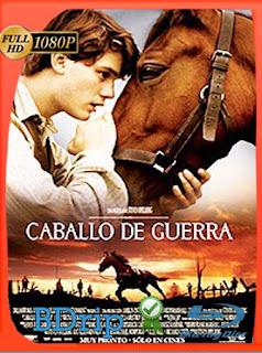 Caballo de Guerra (2011) BDRIP1080pLatino [GoogleDrive] SilvestreHD