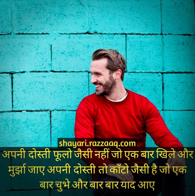 Friendship Shayari in hindi - Apane Dosti foolo jaise hanhin