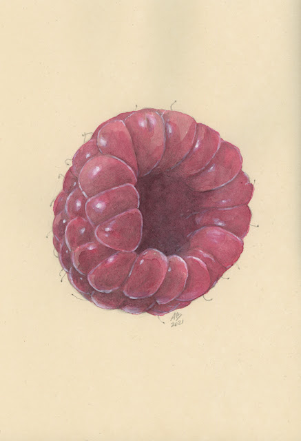 alexandra burda, core, illustration