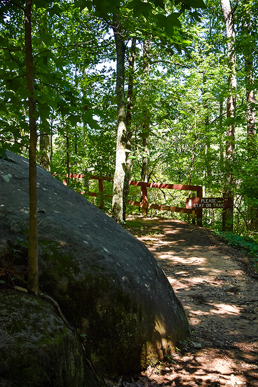 Panola Mountain State Park | Photo: Travis Swann Taylor