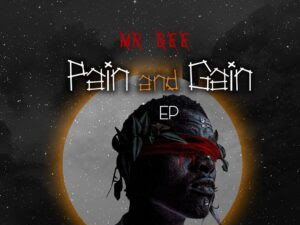 FULL EP: Mr Bee – Pain And Gain Ep