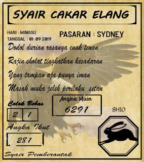 SYAIR SYDNEY 01-09-2019