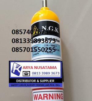 Jual Extra Hight Voltage NGK 220V-500KV di Palangkaraya