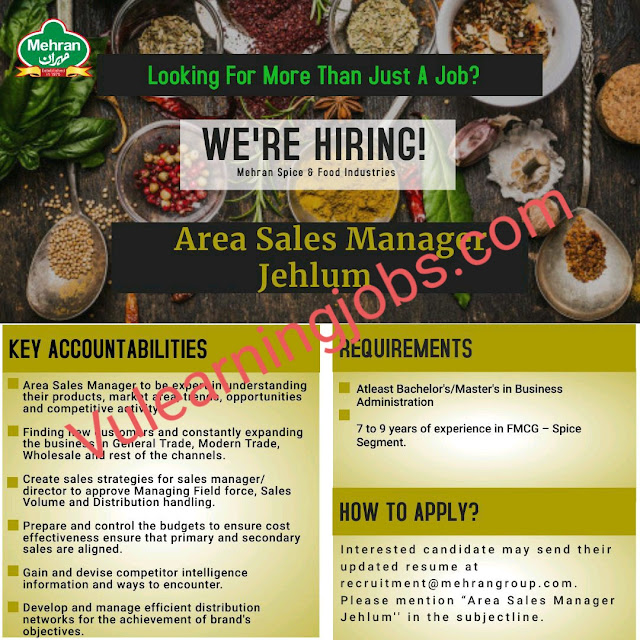 Mehran Spice & Food Industries Jobs 2020 For Area Sales Manager Latest