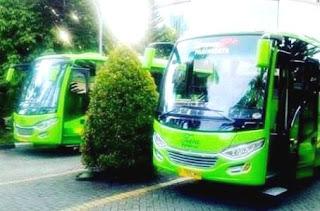 Sewa Bus Pariwisata Medium Tangerang, Sewa Bus Medium Tangerang
