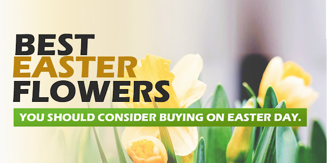 The Best Flowers you should consider buying on Easter Day