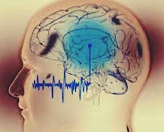 wiki antrenarea creierului cu unde cerebrale lambda