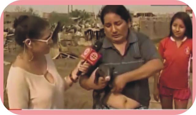 Woman breastfeeds pig