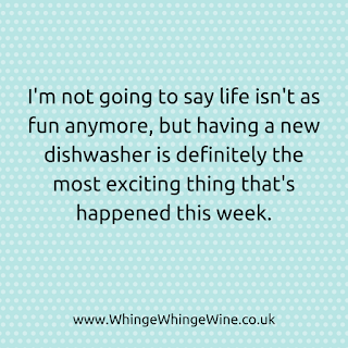 Parenting meme: I'm not going to say life isn't as fun anymore, but having a new dishwasher is definitely the most exciting thing that's happened this week