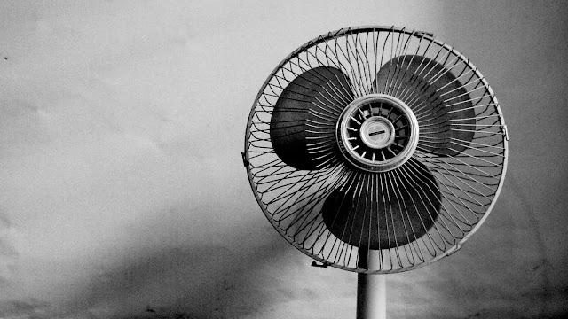 Best Pedestal Fan