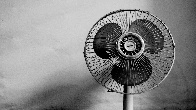 Top 5 Best Stand Fan In India | Best Pedestal Fan In India