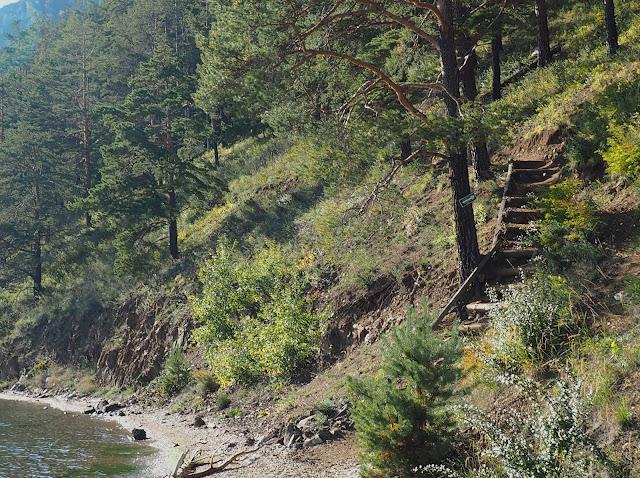 Большая Байкальская тропа - лестница (Листвянка – Большие Коты)