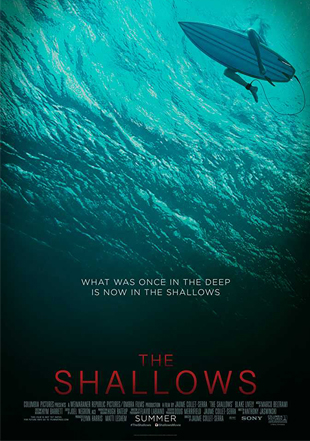The Shallows 2016 BRRip 720p Dual Audio In Hindi English