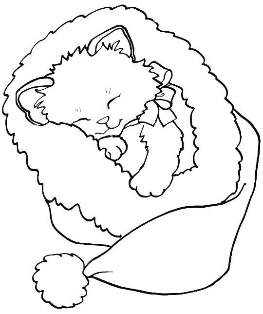 Tranh tô màu con mèo nằm ngủ