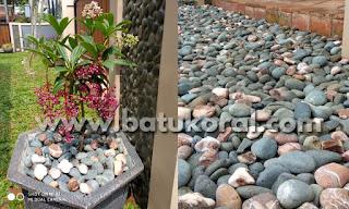 batu koral taman