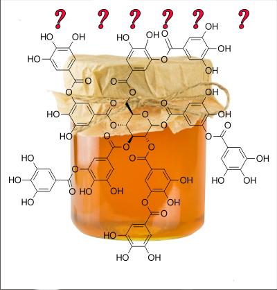 Scienceshop: Κάνουμε στο μέλι όλων των ειδών τις αναλύσεις
