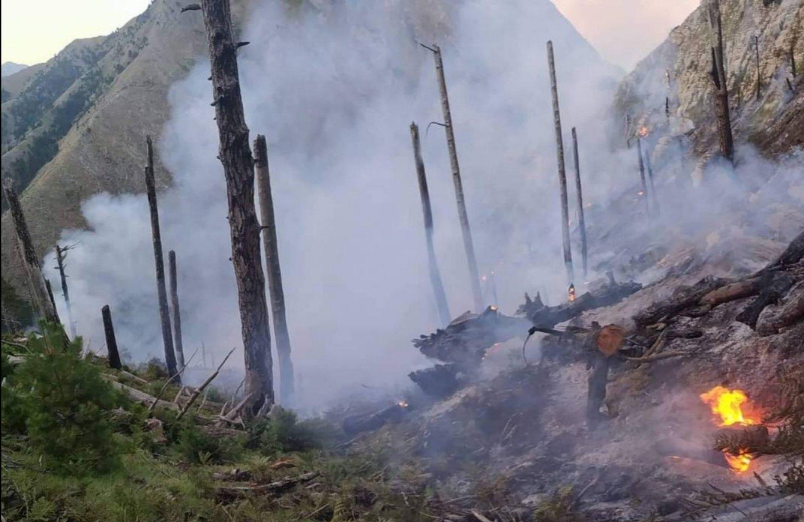 Πυροσβεστική: 48 δασικές πυρκαγιές το τελευταίο 24ωρο