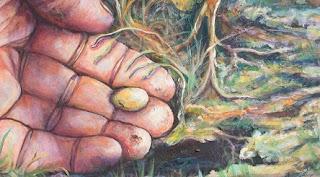 Superstiții despre semințe
