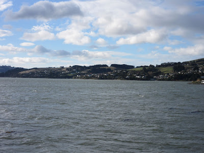 Península de Otago, en Nueva Zelanda