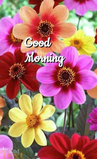 Good Morning flower Wishes Sweet Images