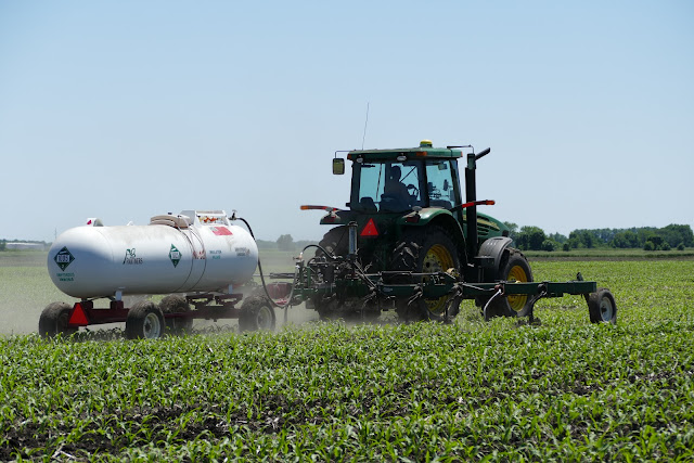 Post-planting management nitrogen anhydrous ammonia sidedress