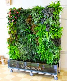 jasa taman dalam rumah atau taman indoor tianggadha art
