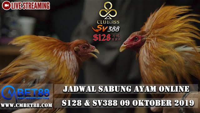 Jadwal Sabung Ayam Online S128 &  Sv388 09 Oktober 2019