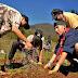 Ciencia y Comunidad Por La Restauración Ecológica de Cayumanque