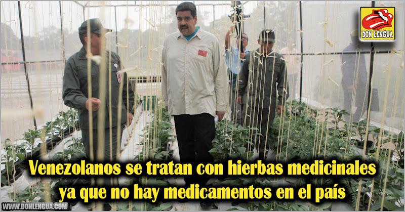 Venezolanos se tratan con hierbas medicinales ya que no hay medicinas en el país