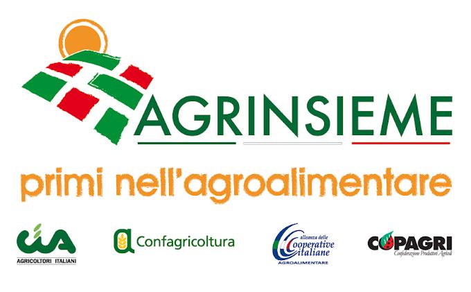 """Agrinsieme: """"Piena disponibilità a lavorare con la comunità scientifica che si occupa di scienze agrarie"""""""