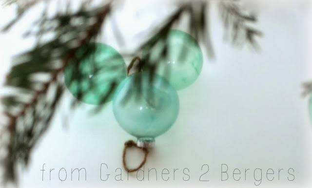 from Gardners 2 Bergers