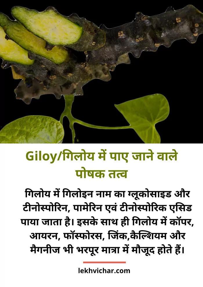 Nutrients found in Giloy in Hindi