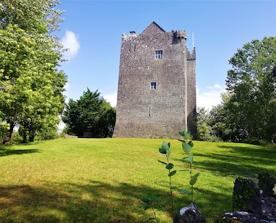 Redwood Castle, Lorrha Tipperary.