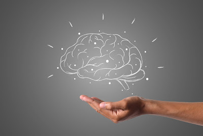 some-surprising-facts-about-the-human-brain-in-bengali