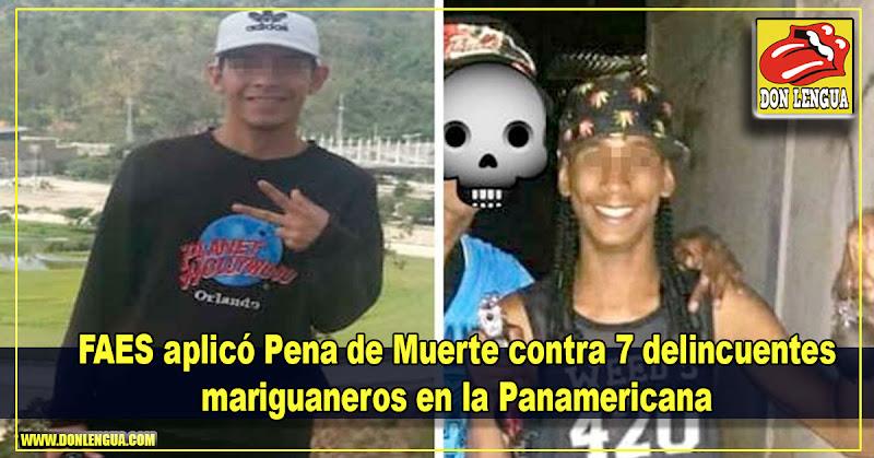 FAES aplicó Pena de Muerte contra 7 delincuentes mariguaneros en la Panamericana