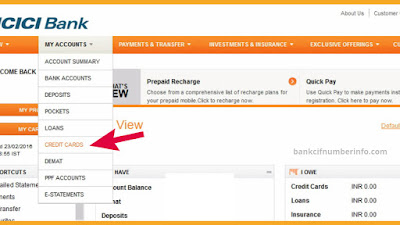 Select Credit card and loan option