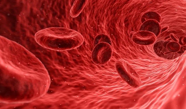 Natural Treatments for Managing Symptoms of Sickle Cell Anemia