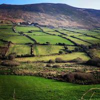 Ireland Images: Green fields in Dingle