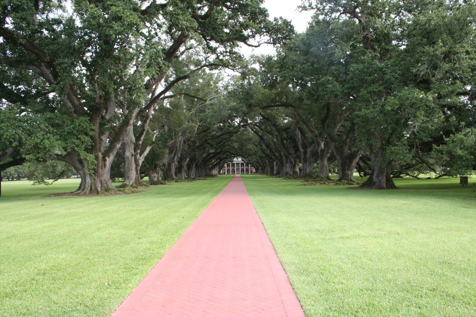 LivelyRV: Oak Alley Plantation