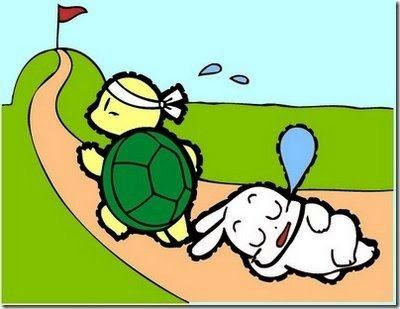 Bài học kinh doanh từ câu chuyện rùa và thỏ thời hiện đại